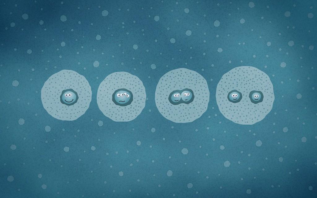 Учёные выяснили, как рапамицин замедляет клеточный рост